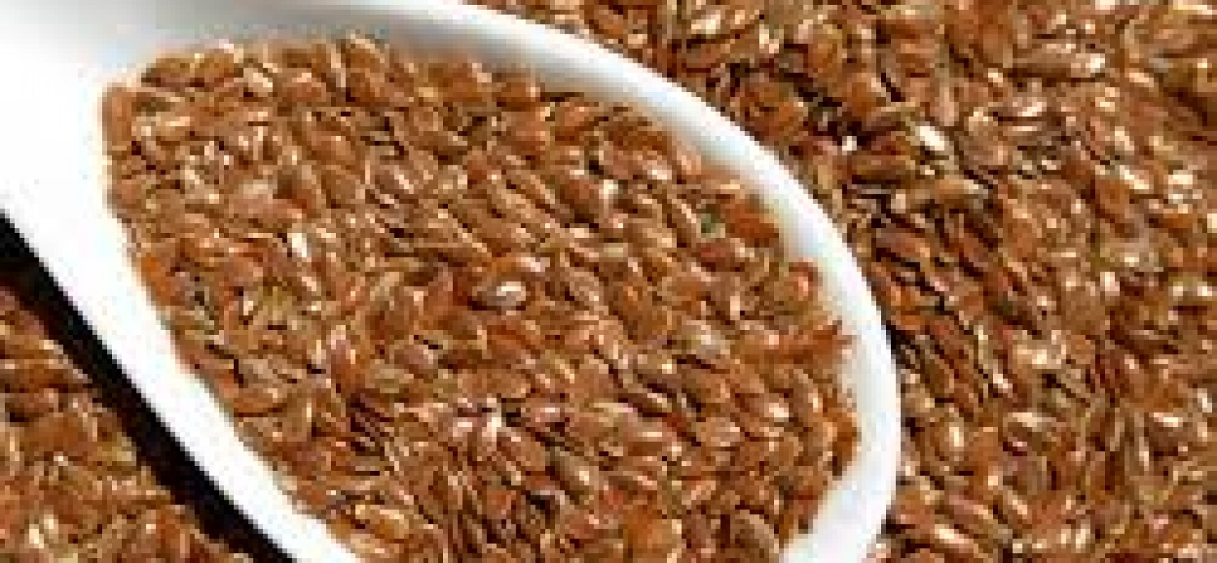 All About Flax Seeds