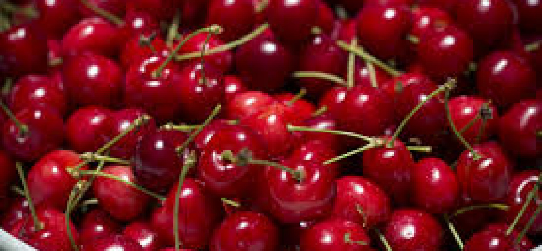 The Love For Cherry