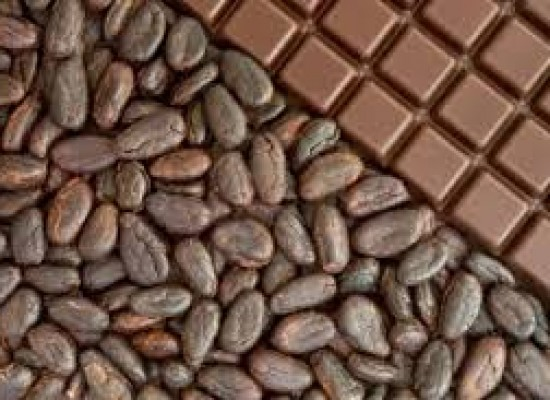 Interesting facts about chocolates