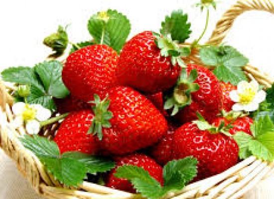 Strawberry Pleasures