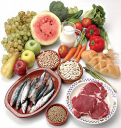 protein food to be taken during pregnancy