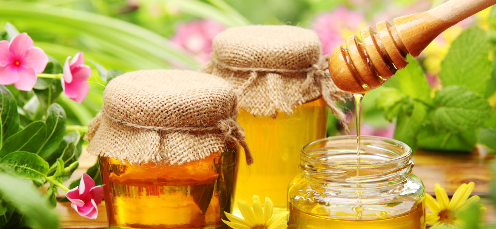 Fun facts about honey – the wonders it can do!