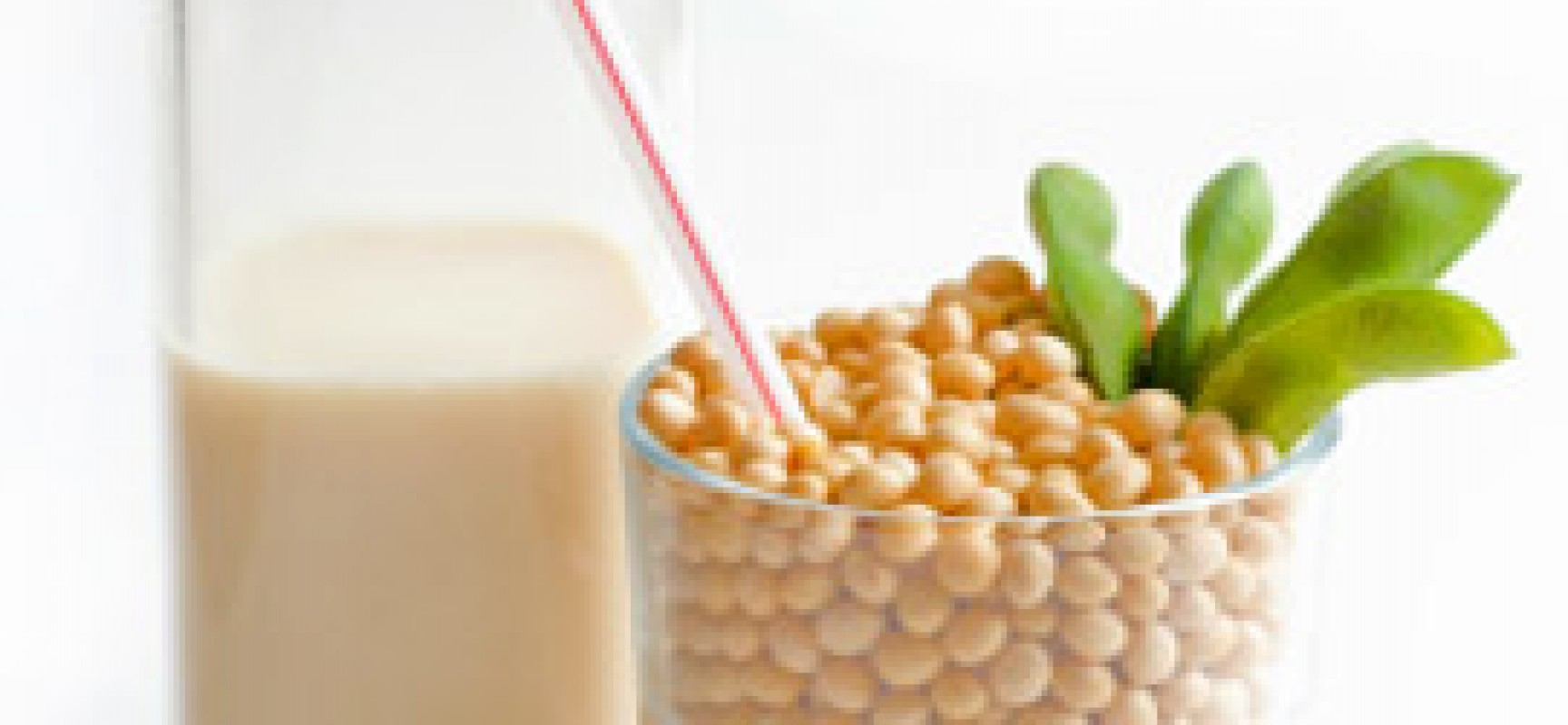 Wonderful Soy milk!