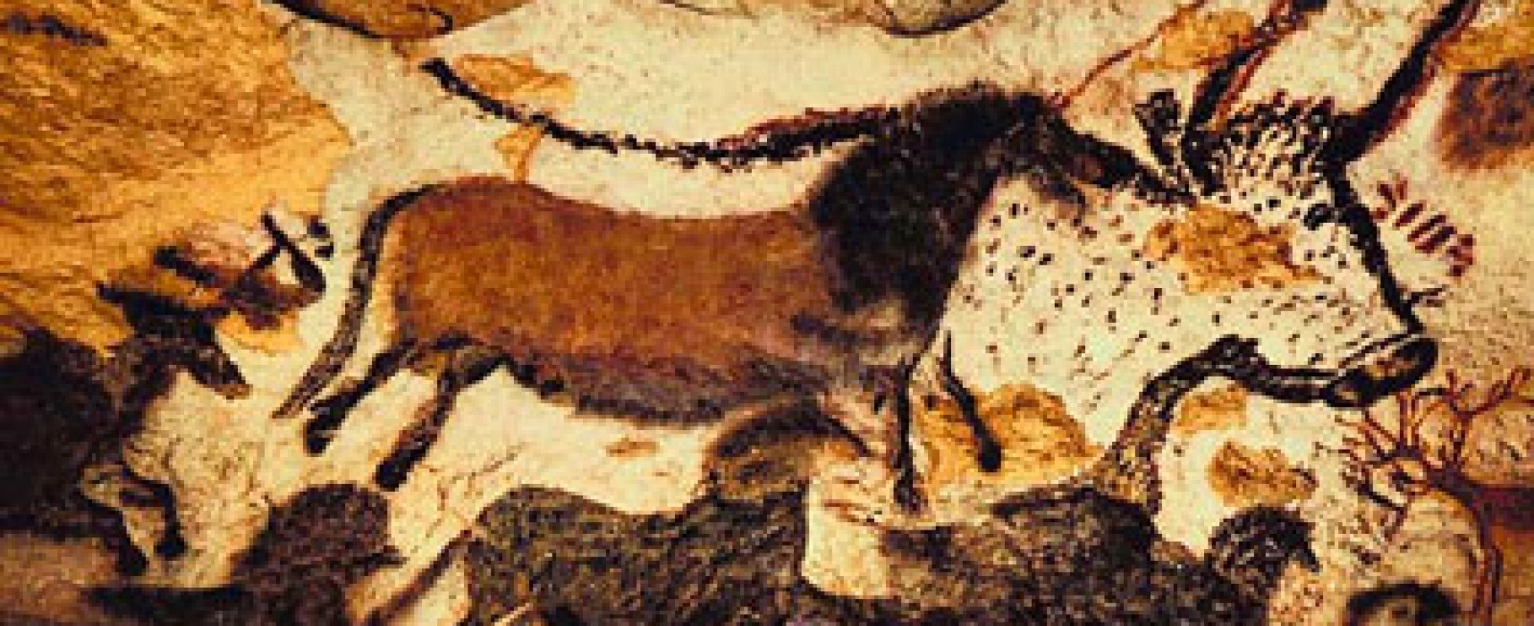 A Look into the Paleolithic Diet