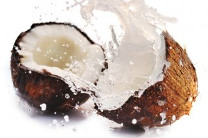 Coconut a substitute of palm