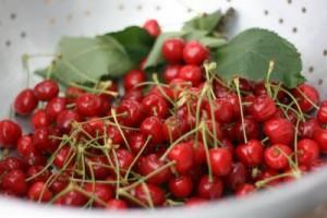 brooks cherry
