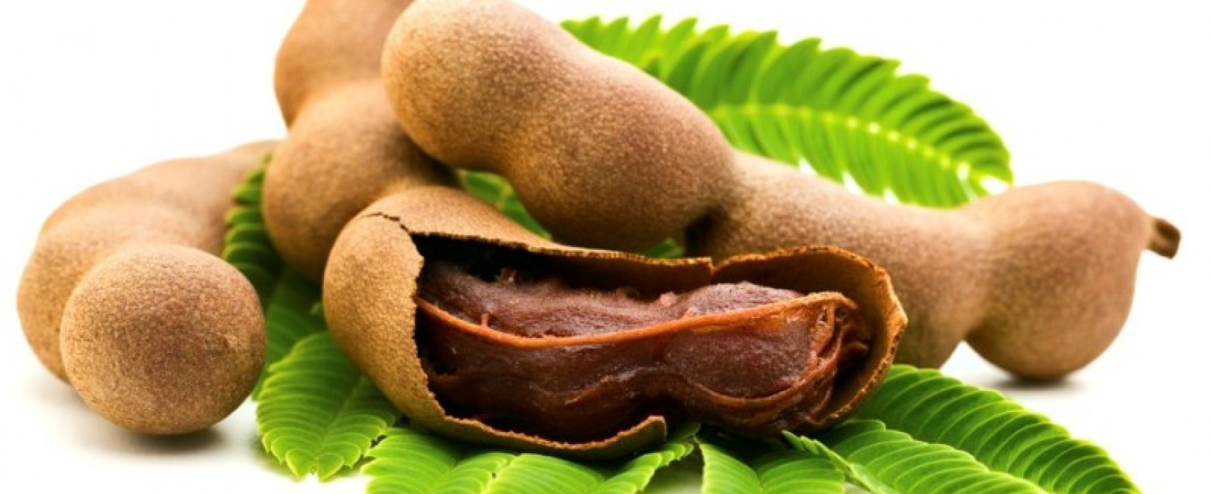The Tamarind LOVE!