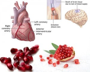 Health-Benefits-of-Pomegranate-for-better-functioning-of-heart