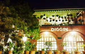 diggin-4630